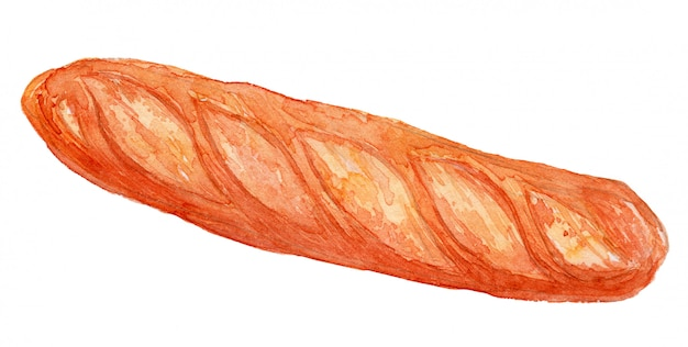 Baguette bread watercolor illustration