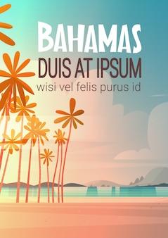 Bahamans Sea Shore