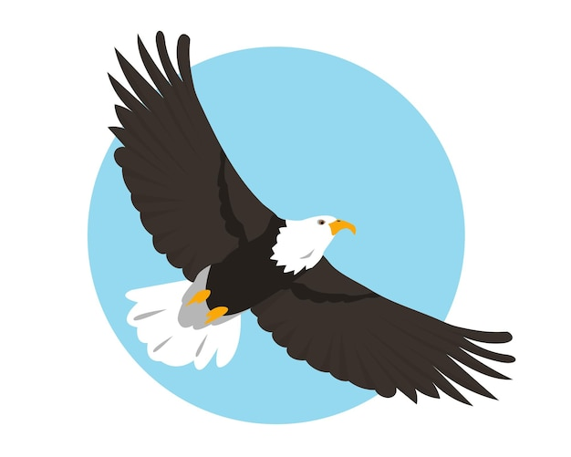 Bald eagle flying in sky bird icon isolated on background