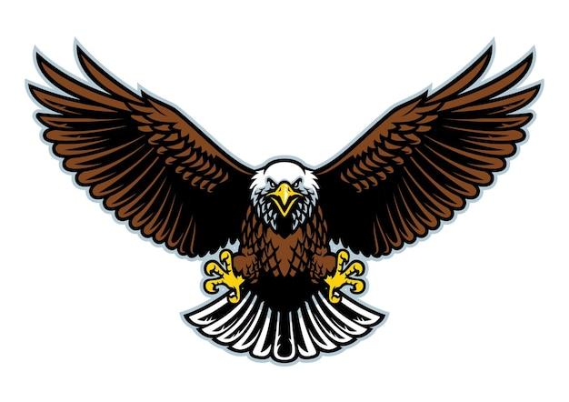 Белоголовый орлан летит с широко распахнутыми крыльями