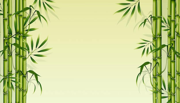 Bamboo background. green floral illustration.