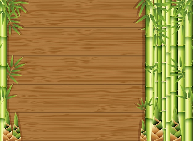 Bamboo and bamboo shoots on woods background