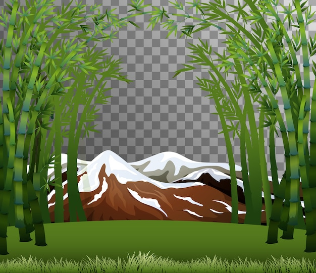 Bamboo forest scene with transparent background