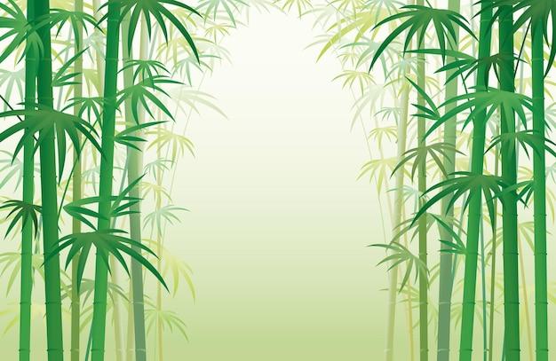Бамбуковый сад лесной фон рамки