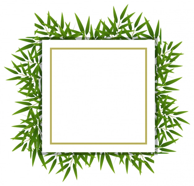 Бамбуковый лист на белом шаблоне