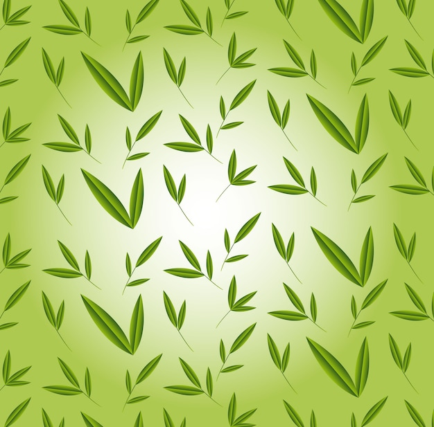 Bamboo leaves over green background vector illustration
