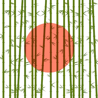 Bamboo of the red sun