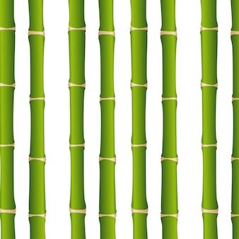 Bamboo sticks over white background