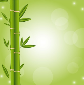 Bamboo sticks with space for copy green background vector