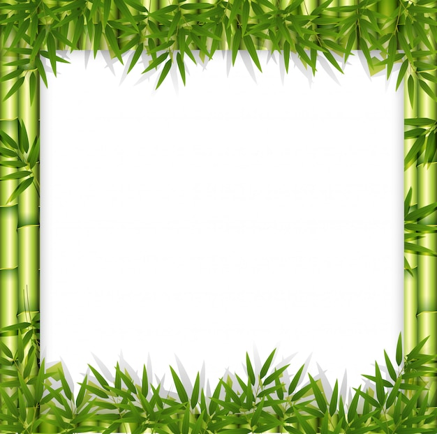 대나무 테마 프레임 개념