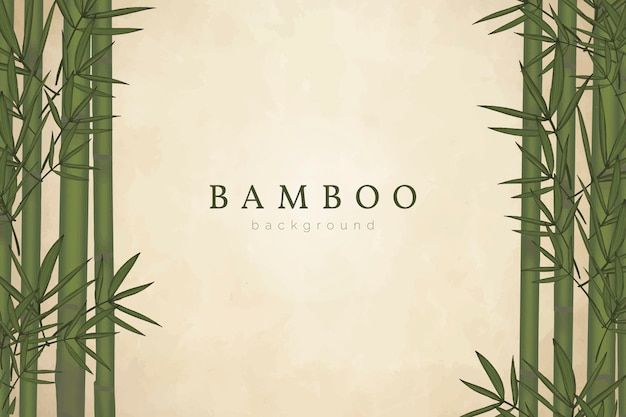 Bamboo tree background