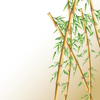 Бамбук ствола с листьями значок. украшение растений