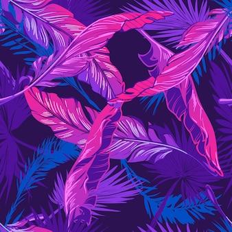 Banana and fan palm tree leavs on a dark purple background.