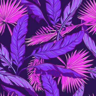 Banana and fan palm tree leavs on a dark purple background.