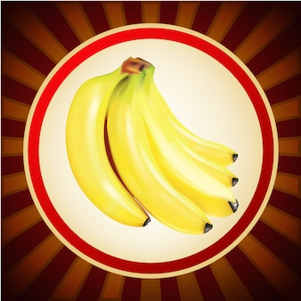 Banana fruit layout design template