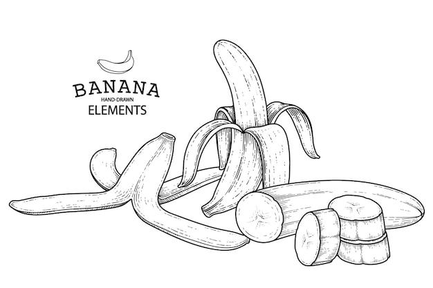 바나나 손으로 그린 복고풍 그림