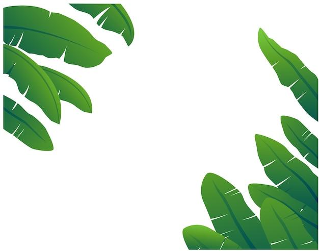 Листья банана красиво аранжированы и расставлены