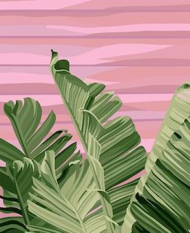 ピンクの背景にバナナの葉。ベクトルファッションイラスト