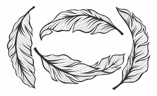 바나나 잎 세트
