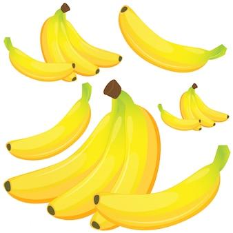 흰색 배경에 바나나입니다.