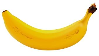 Banana Realistic One