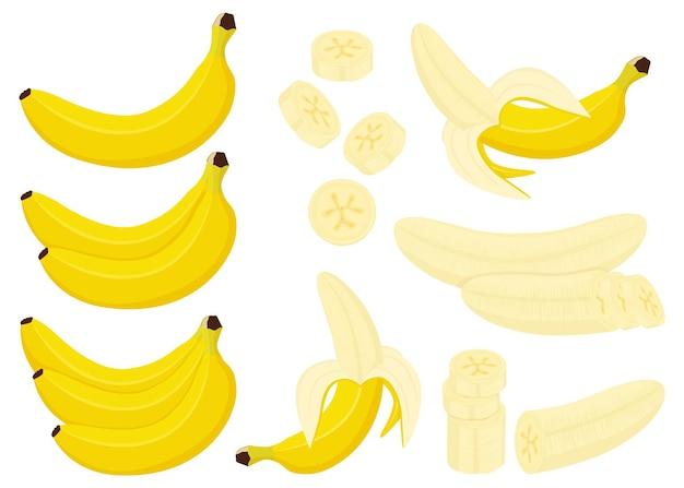 Набор бананов. целый, половина и очищенный банан, связка бананов и ломтики банана, изолированные на белом фоне, плоский мультяшном стиле, вектор