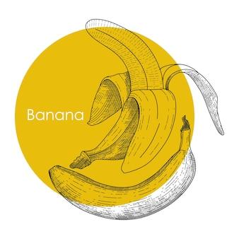 Банан векторные иллюстрации в стиле гравюры рисованной для этикетки плакат