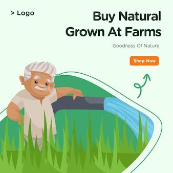 농장에서 자란 자연의 배너 디자인