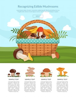 Banner landing page with cartoon mushrooms