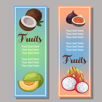 Banner melon coconut fig dragon fruit template