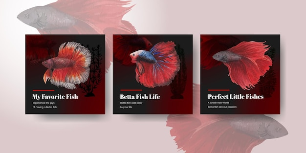 水彩風のベタの魚とバナーテンプレート