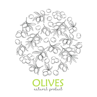 Banner template with modern engraving olives and tree branches for farmers market