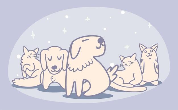 Баннер с милыми домашними животными
