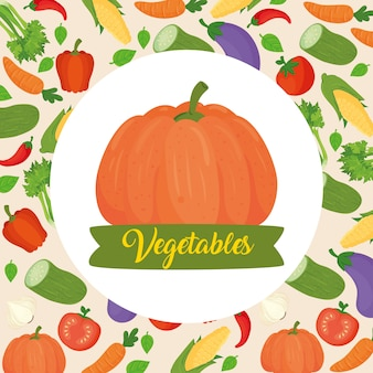 Banner with pumpkin in background of vegetables
