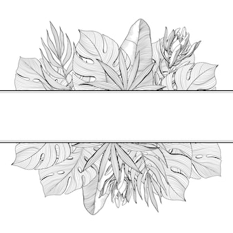 Banner with top and bottom borders of tropical, jungle palm leaves, hand-drawn vector illustration