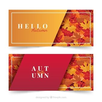 Banners with autumn leaf
