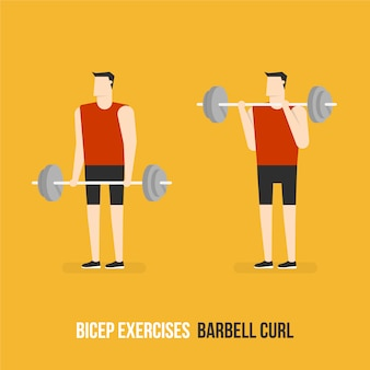 Barbell curl demostration