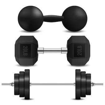 Barbell, dumbbells and kettlebell vector
