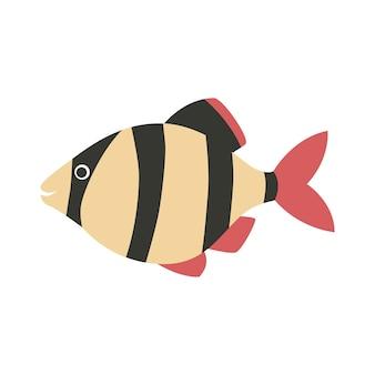 Barbus 물고기 아이콘 만화입니다.