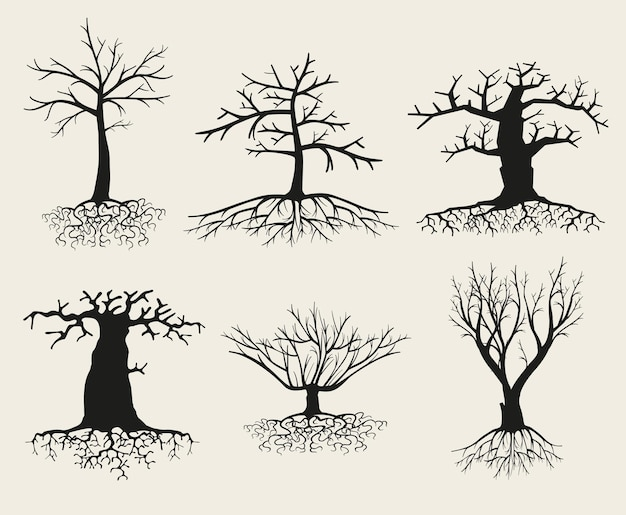Bare tree silhouette set with roots
