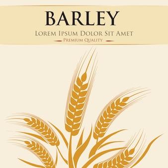 Barley grains design