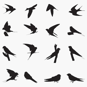 Barn swallow silhouettes illustration