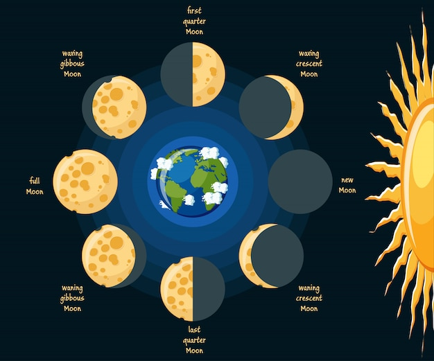 Basic moon phases diagram