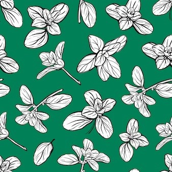 Basil seamless pattern italian herbsa sprig of marjoram basil is a fragrant and fragrant seasoning h...