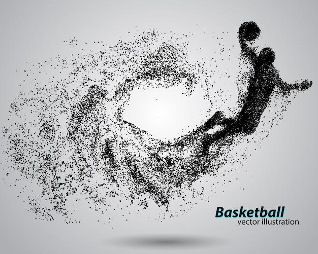 입자에서 농구 선수.