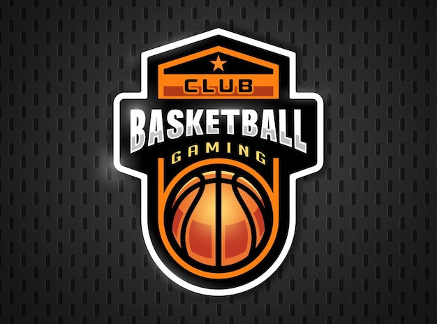 Basketball professional logo in flat style.