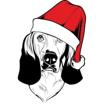 크리스마스에 산타 모자를 쓴 바셋 하운드 개