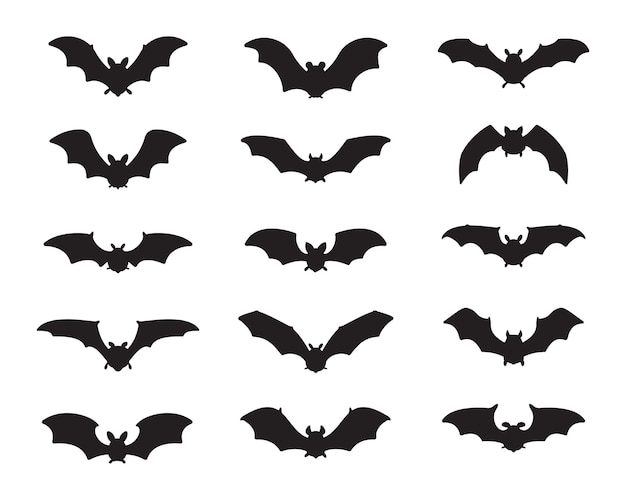 Bat vampire vector. scary ghost bat silhouette flying out to suck blood on halloween.