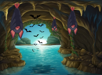 Bats living in the dark cave