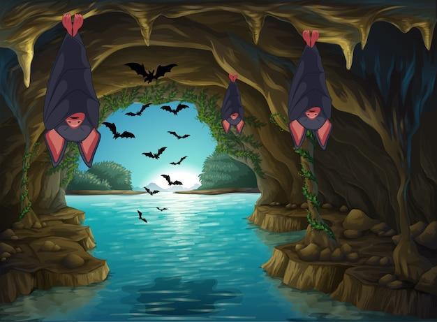 暗い洞窟に住むコウモリ